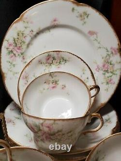 1900's Theodore Haviland Limoges For Wanamaker Dinnerware Place Setting For 9