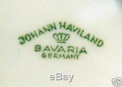 67 Pcs (or Less) Johann Haviland Michele Pat. Bavarian China Circa 1950