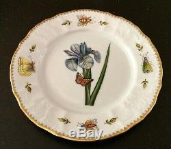 ANNA WEATHERLEY porcelain REDOUTE BLUE IRIS salad plate list $320 NEW