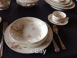 Antique Haviland Limoge France 114 piece Schleiger 58D dinnerware set