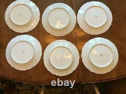 HAVILAND LIMOGES DINNER WARE SET Schleiger No. 339-B