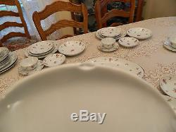 Meito China Rose Chintz Service for 6 with4 Serving Pieces 3-2