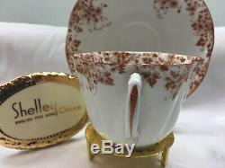 Shelley Dainty Brown Daisy 051/b Cup And Saucer Brown Trim