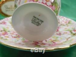 Shelley MAYTIME CHINTZ RIPON SHAPE CUP AND SAUCER GOLD TRIM #13386