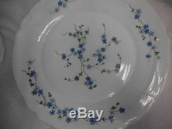 Veronica 16 Pc Dinnerware Vintage NIB Arcopal France J. G. Durand Forget Me Nots