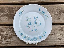 Veronica 16 Piece Dinnerware Vintage Arcopal France J. G. Durand Forget Me Nots